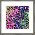 Spectrum Of Abstract Shapes Framed Print