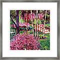 Spellbound Color Impressions Framed Print