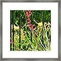 Spring Jumble Framed Print