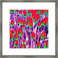Spring Tulips - Photopower 3112 Framed Print