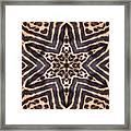 Star Of Cheetah Framed Print