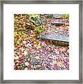 Step Into Fall Framed Print