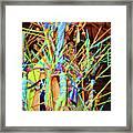 Stick Of Color Framed Print