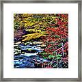 Stream In Autumn Framed Print