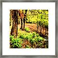 Strolling Through The Park Framed Print by Savannah Fonner