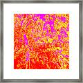 Summer Heat Framed Print by Eikoni Images
