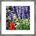 Summerflowers Framed Print