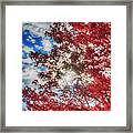 Sun Sky Clouds And A Red Maple Framed Print