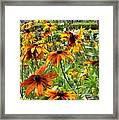 Sunflowers And Friends Framed Print