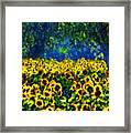 Sunflowers No2 Framed Print
