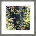 Sunlite Silver Falls Framed Print