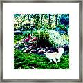 Tag You're It Framed Print