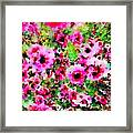 Tea Tree Garden Flowers Framed Print