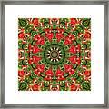 Texas Paintbrush Kaleidoscope Framed Print