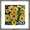 The Art In Flowers 5 Framed Print