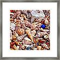 The Blue Bead Framed Print