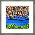 The Calming Tree  Framed Print