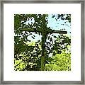 The Cross In Nature Framed Print