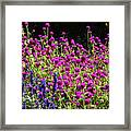 The Flowers And The Bees Framed Print