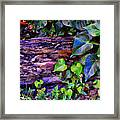 The Log In The Woods  Framed Print