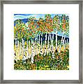 The Magical Aspen Forest Framed Print by Christy Woodland