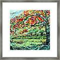 The Old Maple Tree Framed Print