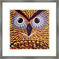 The Owl Stare Framed Print