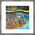 The Reflections Of Fall Framed Print