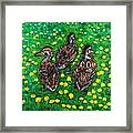 Three Ducklings Framed Print