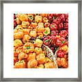 Tile Peppers Framed Print
