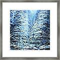 Tim's Winter Forest Framed Print