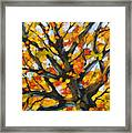 Top Of The Maples Framed Print