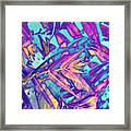 Tossed About Framed Print