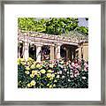 Tournament Of Roses Framed Print