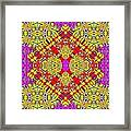 Indian Palace Framed Print