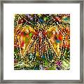 Trapped Butterfly Framed Print
