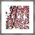 Tree Blossoms Framed Print