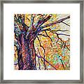 Tree Of Life And Wisdom   Framed Print