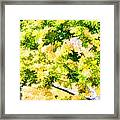 Trees And Leaves 2 Framed Print