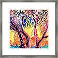 Trees In Summer Framed Print