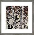 Trees Reflection Framed Print
