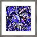 Triangulate Framed Print by Ron Bissett