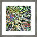 Tropical Rays Framed Print