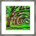 Tunnel Tree Framed Print