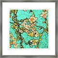 Turquoise Blossom Framed Print