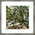Vegetation Takeover Framed Print