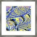 Veins to Lace Framed Print