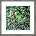 Waiting For The Thaw Framed Print