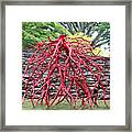 Walking Roots Sculpture 2 Framed Print