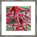 Walking Roots Sculpture Framed Print